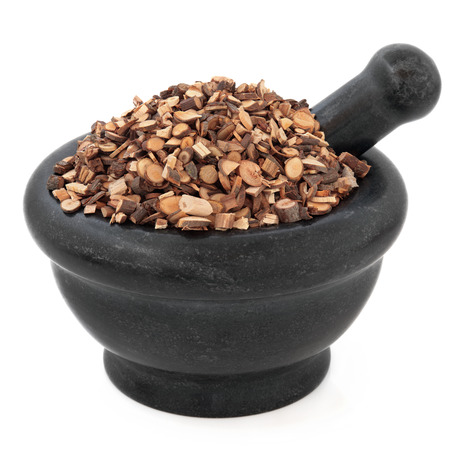 Cinnamon twig chinese herbal medicine in a black stone mortar with pestle over white background  Gui zhi  photo