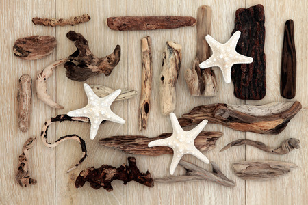 driftwood: Starfish and driftwood abstract design over old oak background