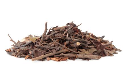 muerdago: Mulberry hierba muérdago utilizado en la medicina herbal china sobre el fondo blanco Sang ji sheng