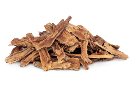 Gentian root herb used in chinese herbal medicine over white background  Qing jiao  Gentiana macrophylla