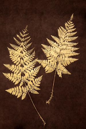 fauna: Fauna hoja de helecho de oro sobre marr�n lokta hecho a mano de papel de fondo