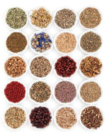 traditional remedy: Herbal medicine selection also used in witches magical potions over white background