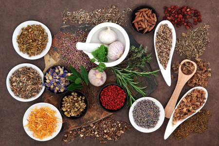 Herbal medicine selection also used in pagan witches magical potions