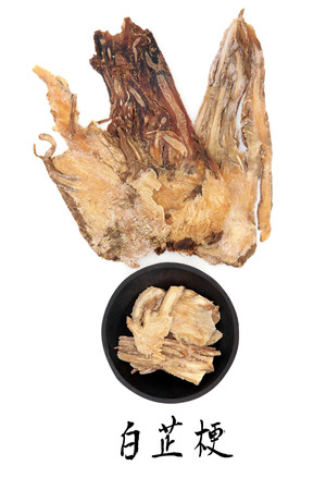 Angelica herb root used in traditional chinese herbal medicine with mandarin title script translation  Dang gui