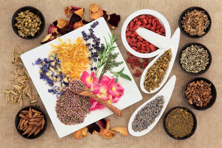Herbal naturopathic medicine selection also used in pagan witches magical potions over old paper background  Stock Photo