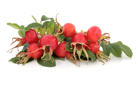 Rose hip fruit over a white background