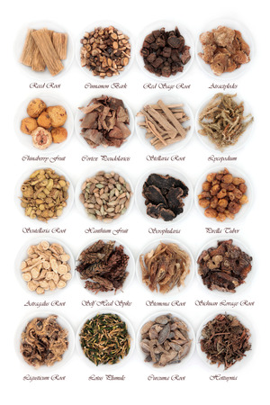 Large chinese herbal medicine selection in china bowls over white background with titles