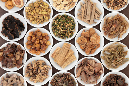 Large chinese herbal medicine selection in white china bowls