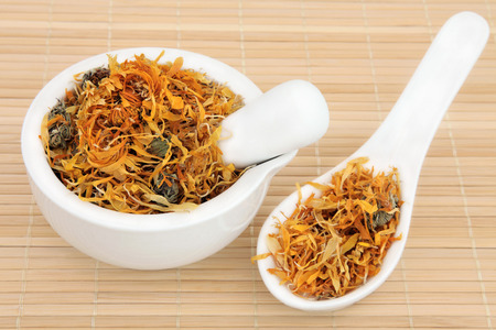 calendula: Dried calendula flowers used in chinese herbal medicine in a porcelain mortar with pestle and spoon