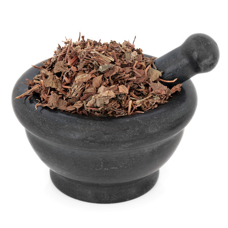 xing: Houttuynia herb chinese herbal medicine in a black stone mortar with pestle over white background  Yu xing cao