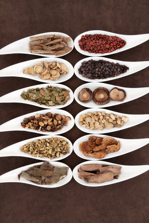Yang herbs used in chinese herbal medicine in white china dishes over lokta paper background  photo