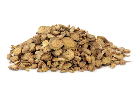Scutellaria root used in chinese herbal medicine over white background   Huang qin