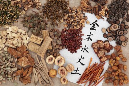 漢方薬の選択呉興翻訳トップ下部の金属、木、水、火、地球にライス ペーパーの 5 つの要素中国の書道スクリプト