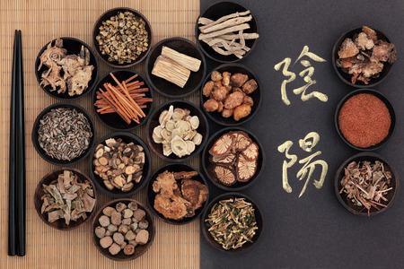 Chinese kruidengeneeskunde met yin en yang kalligrafiemanuscript over bamboe vertaling luidt als yin yang Stockfoto