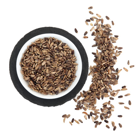 Milk thistle seed used in herbal medicine for liver protection and detox  Silybum marianum