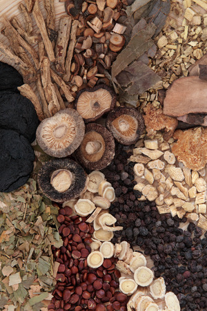 codonopsis roots: Chinese herbal medicine selection forming a background  Stock Photo