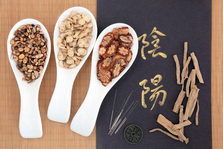 Chinese herbal medicine with acupuncture needles with yin and yang calligraphy script and I ching coin  Translation reads as yin yang  Stock Photo