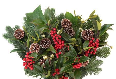fauna: Fauna invierno y de la Navidad con bayas rojas del acebo, el mu�rdago, el abeto abetos ramitas de hojas y pi�as