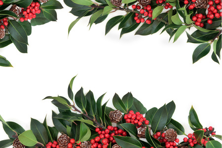 Holly background border decoration with red berries and pine cones over white background.