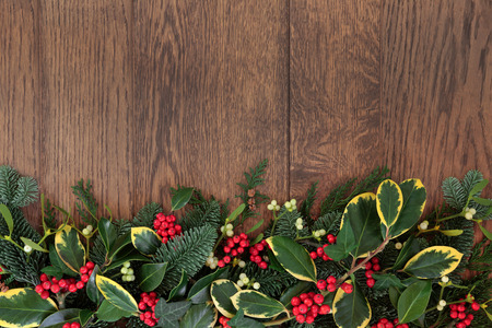 Christmas and winter background border with holly, mistletoe, ivy, fir and cedar cypress over old oak. photo