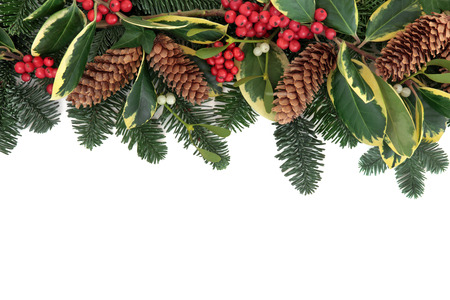 Christmas and winter background floral border with holly, ivy, mistletoe, pine cones and fir over white with copy space. photo