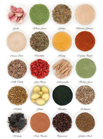 Immune boosting super food selection in porcelain dishes over white background with titles.