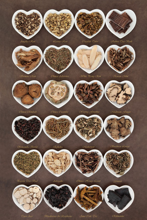 Large chinese herbal medicine selection in heart shaped porcelain bowls over lokta paper background with titles. Archivio Fotografico