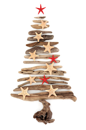 driftwood: Driftwood christmas tree abstract with starfish over white background