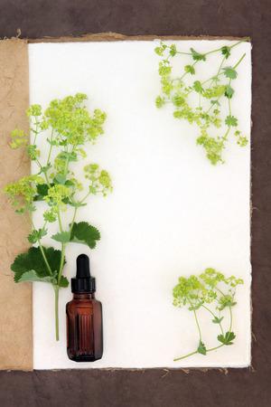 plantas medicinales: Ladys manto de hierbas flores frontera con frasco gotero medicinal en un cuaderno de cáñamo natural y fondo de papel marrón.