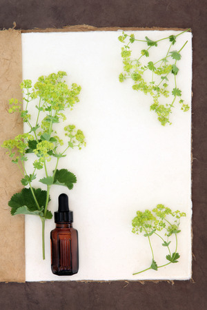 brown bottle: Ladys mantle herb flower border with medicinal dropper bottle on a natural hemp notebook and brown paper background. Alchemilla.