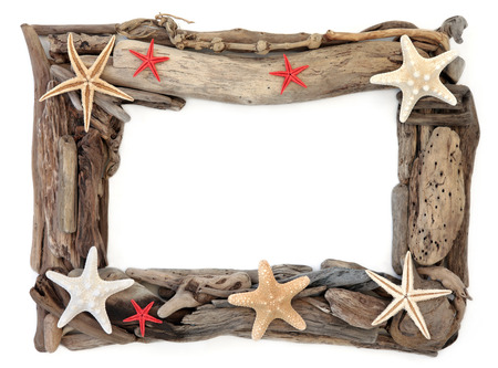 driftwood: Starfish shells and driftwood forming an abstract frame over white background.