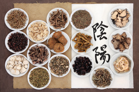 chinese herbs: Chinese herbal medicine selection with calligraphy script of yin and yang symbols on rice paper on an old notebook over brown paper background. Translation reads as yin yang.
