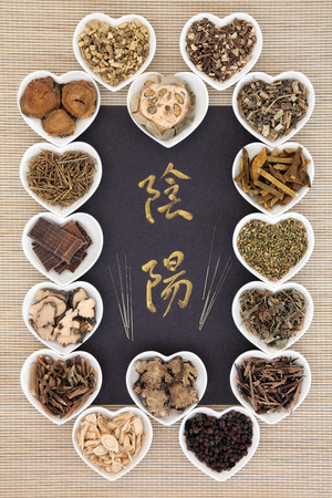 Chinese herbal medicine selection with acupuncture needles and calligraphy script. Translation reads as yin yang. photo