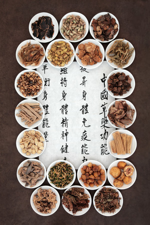 cinnamon bark: Large chinese herbal medicine selection in porcelain dishes with calligraphy script. Translation describes the functions to increase the bodys ability to maintain body and spirit health and balance energy. Stock Photo