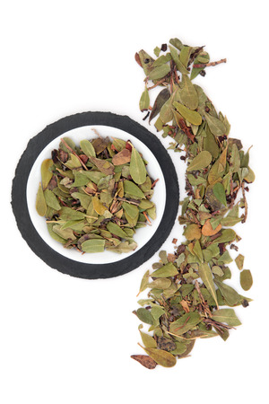 uva: Uva ursi herb leaf sprigs in a porcelain bowl and loose over slate round and white background. Arctostaphylos.