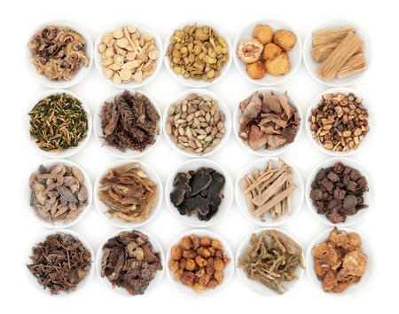 plantas medicinales: Selección de la medicina china a base de hierbas en platos de porcelana sobre fondo blanco.
