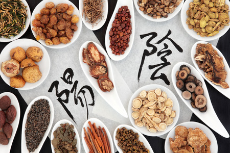 Chinese herbal medicine selection with yin yang calligraphy script on rice paper. Translation reads as yin yang.