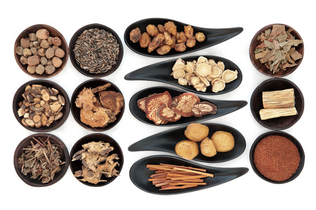 chinese herbal medicine: Chinese herbal medicine selection in black bowls  over white background. Stock Photo