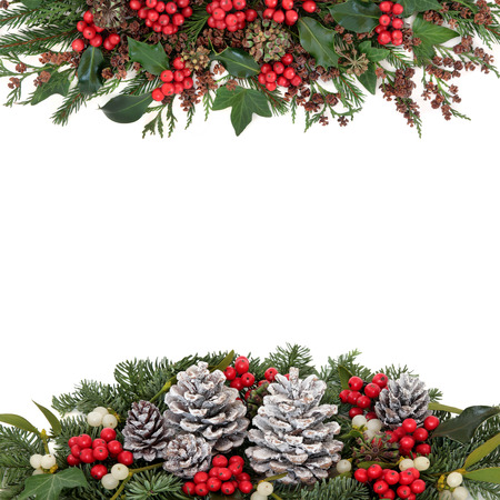 christmas ivy: Christmas and winter flora with holly and red berries, mistletoe, ivy, snow covered pine cones, fir and traditional greenery over white background. Stock Photo