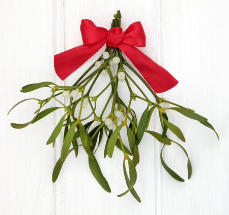 white bow: Mistletoe with red ribbon bow over distressed white wood background. Stock Photo
