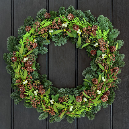 spruce: Winter wreath with mistletoe and blue spruce fir over dark blue oak front door background.