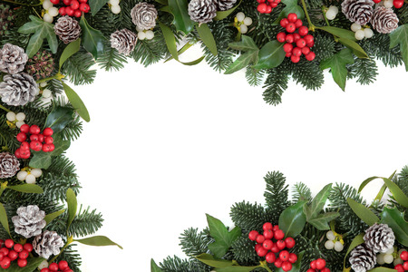 decors: Christmas and winter background border with holly, ivy, mistletoe, blue spruce fir and snow dusted pine cones over white.