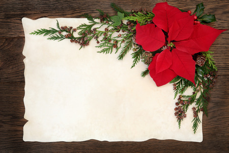 old fashioned christmas: Christmas background border with poinsettia flower holly, ivy and fir on parchment paper over old oak wood.