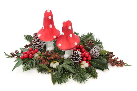 christmas ivy: Christmas flora with fly agaric mushroom baubles, holly, mistletoe, ivy, pine cones and traditional greenery over white background. Stock Photo