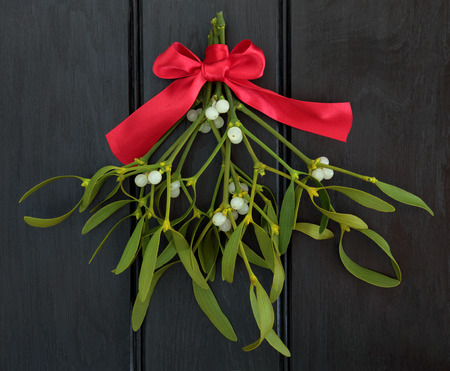 Christmas mistletoe with red ribbon bow over dark wood background. Archivio Fotografico