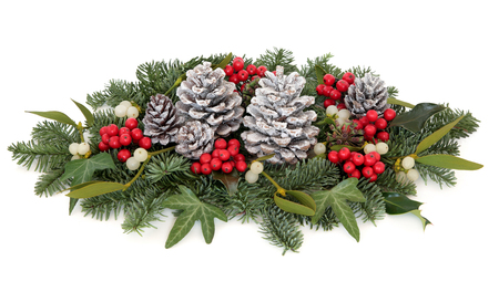 christmas ivy: Christmas and winter flora with holly, mistletoe, ivy, pine cones and traditional greenery over white background.