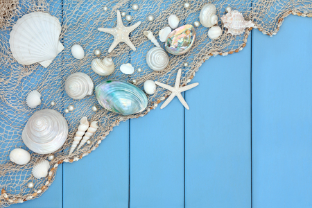 Seashell abstract collage with fishing net over wooden blue background. Stock Photo