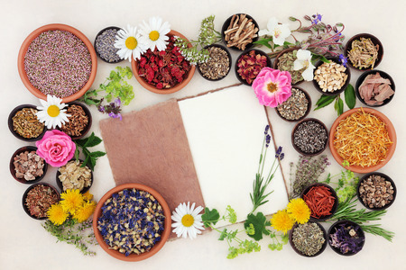Health care using herbal medicine flower and herb selection with hemp notebook over cream paper background.