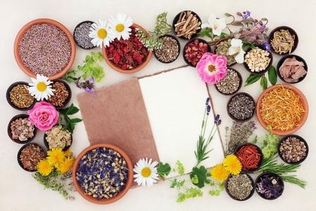 크림 종이 배경 위에 마 노트북 약초 꽃과 허브 선택을 사용하여 건강 관리. 스톡 콘텐츠