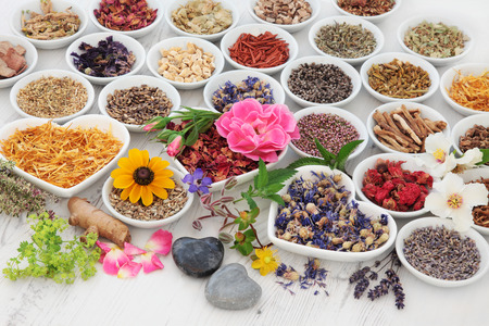 sandalwood: Large herb and flower selection used in herbal medicine in porcelain bowls over distressed wooden background.